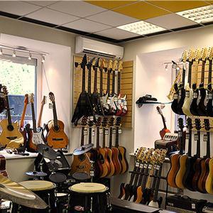 Музыкальные магазины Гавриловки Второй